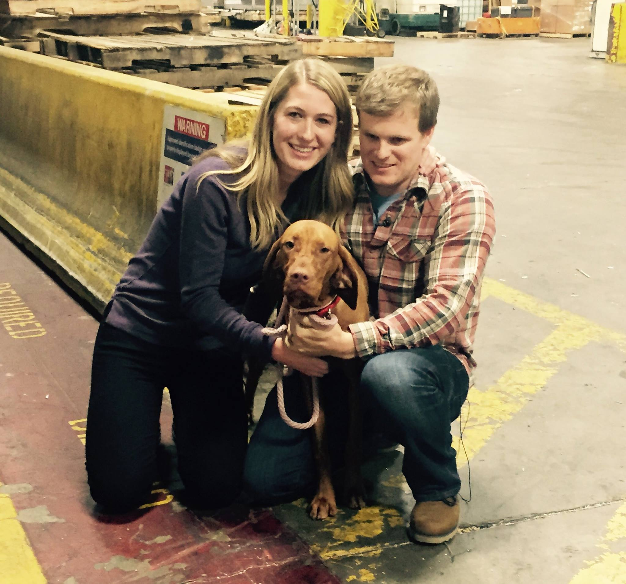 Lost dog home to Seattle owners after cross-country trip