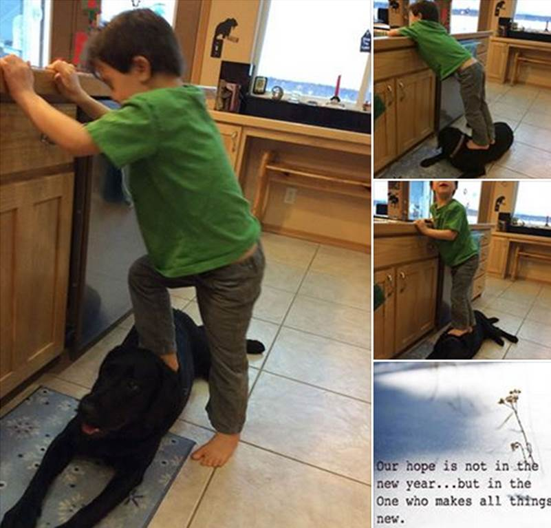 "Sarah Palin tells PETA to ""chill"" following backlash for picture of son standing on family dog"