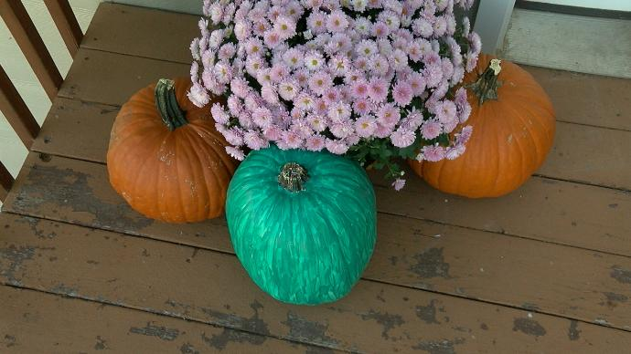 Teal Pumpkin Project helps kids with allergies enjoy Halloween safely