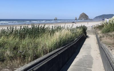 New beach-accessible wheelchairs purchased so visitors can enjoy Cannon Beach