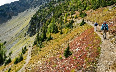 Private Group Helps Preserve Pacific Crest Trail
