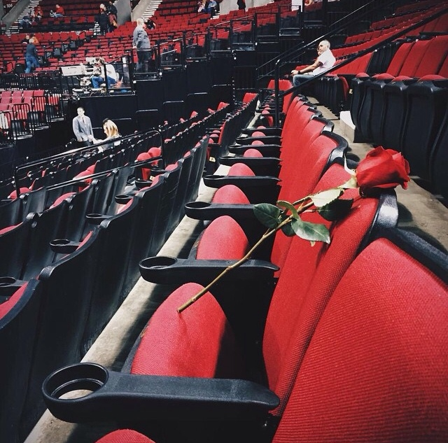 Trail Blazers honor fan who passed away after collapsing during game