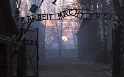 Chelsea Soccer Club is sending Racist Fans on Educational trips to Auschwitz